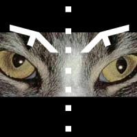 Factory lynx